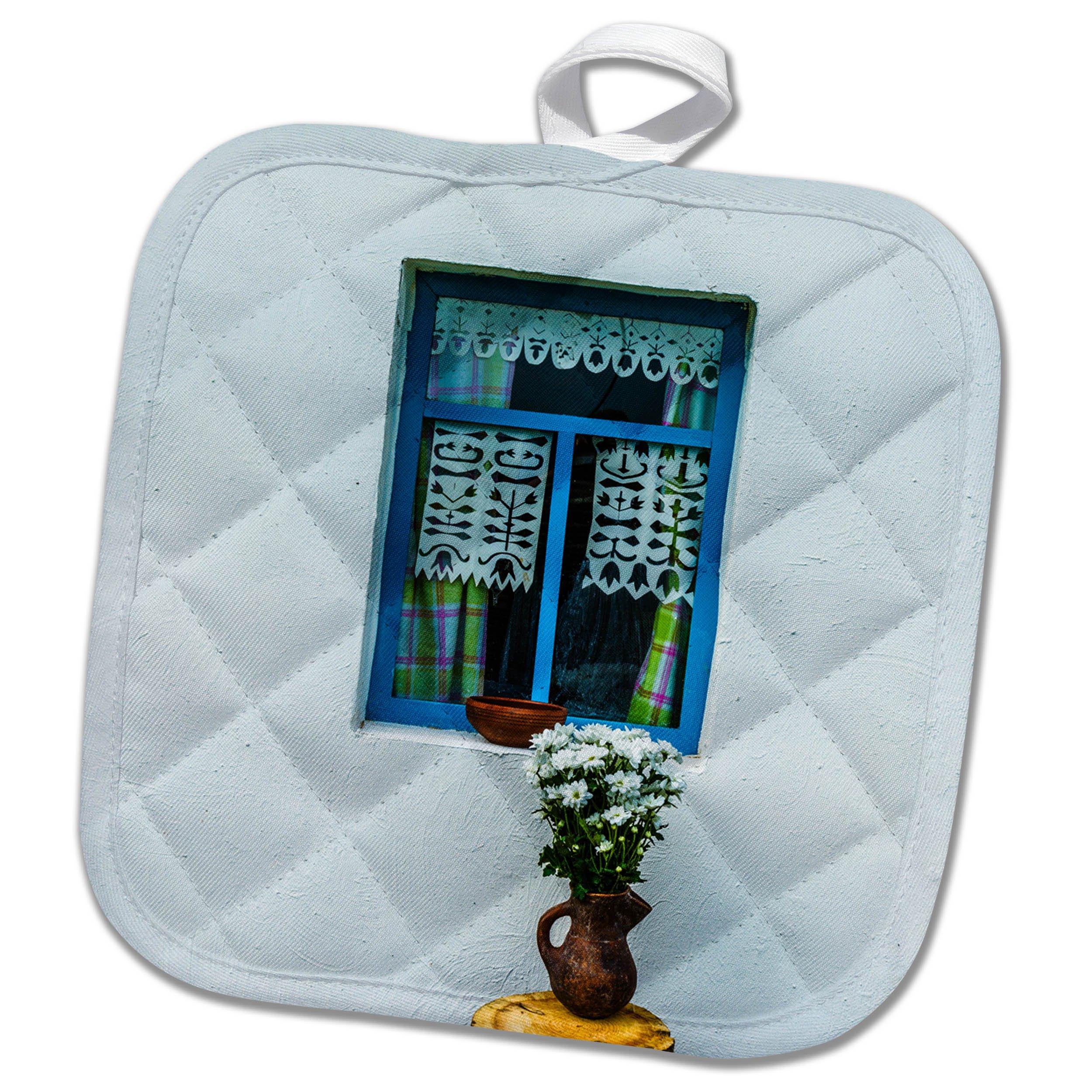 3dRose Alexis Photography - Architecture - White wall, blue window, white flowers, adobe house - 8x8 Potholder (phl_270844_1)
