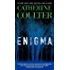 Enigma (An FBI Thriller Book 21)