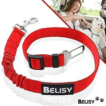Cinturon Perro//Gato Coche 60-80cm para la M/áxima Comodidad Negro BELISY Correa Perro Coche en Nylon El/ástico Ajustable Perros Grandes y Peque/ños Correa Ajustable
