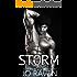 Storm: (Billionaire, bad boy suspense romance) (Sex and Bullets Book 1)