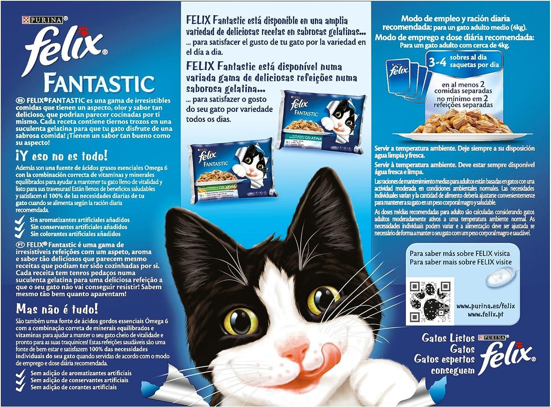 Purina Felix Fantastic Gelatina comida para gatos Selecciones ...