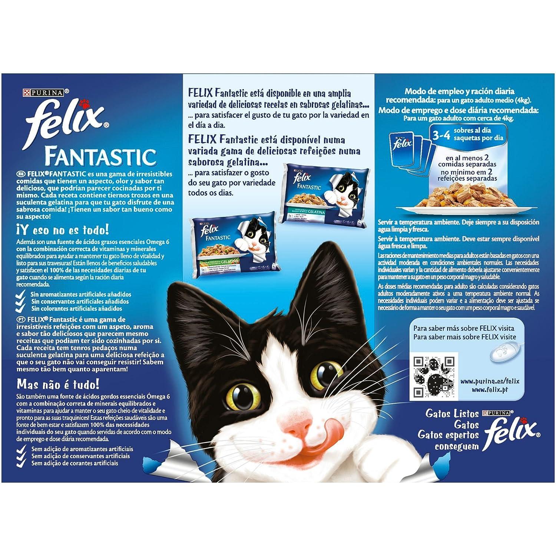 Purina Felix Fantastic Gelatina comida para gatos Selecciones Favoritas 6 x [12 x 100 g]: Amazon.es: Productos para mascotas