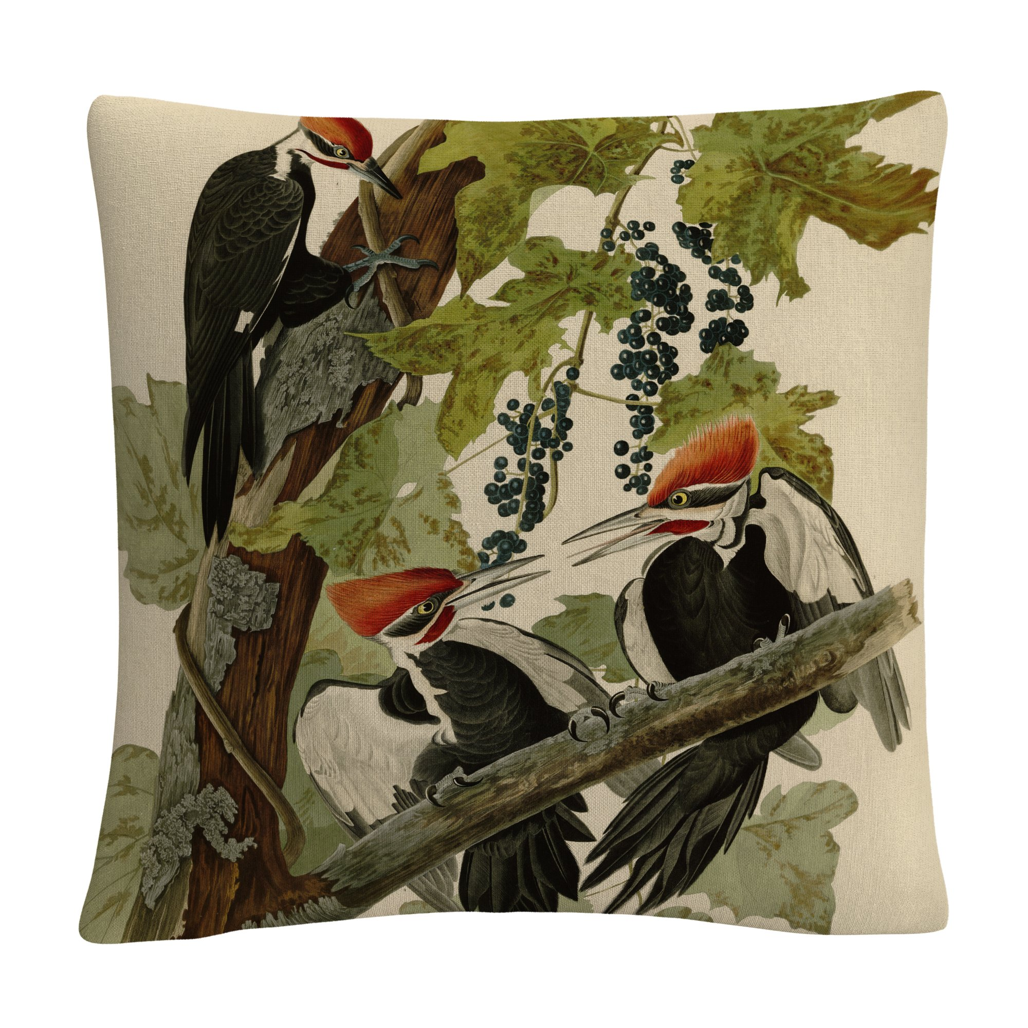 Trademark Fine Art BL01290-PIL1616 John James Audubon 'Pileated Woodpeckers Decorative Throw Pillow, 16'' x 16'', Multicolor by Trademark Fine Art (Image #1)