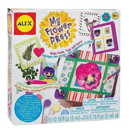 Amazon alex toys craft my flower press toys games alex toys craft my flower press mightylinksfo