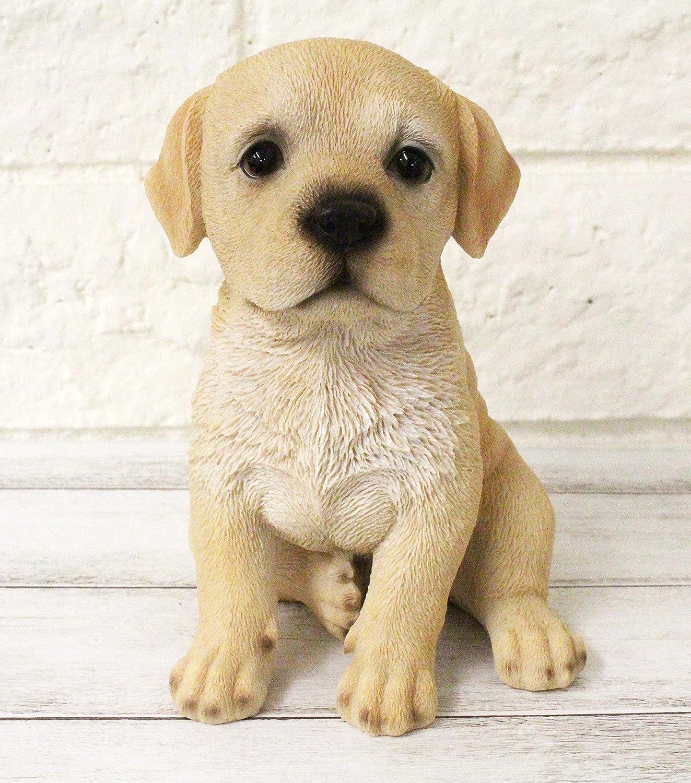 Labrador Retriever Lab Dog Figurine Statue Lifelike Animal Home Garden Decor Resin Collectible Outdoor Sculpture Lawn Patio Accents Yard