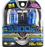 REMIX [ レミックス ] レミックススパークビーム ハロゲンバルブ&LEDウェッジ球 [ 品番 ] DBS-11L
