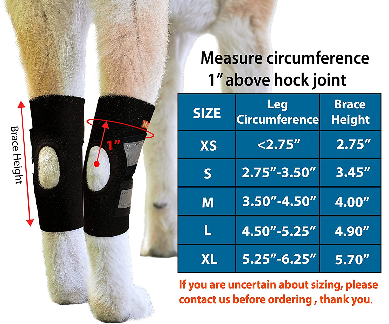 NeoAlly Dog Hind Leg Ankle Braces [Pair] Canine Rear Hock Sleeves with  Safety Reflective Straps for Injury and Sprain Protection, Wound Healing  and