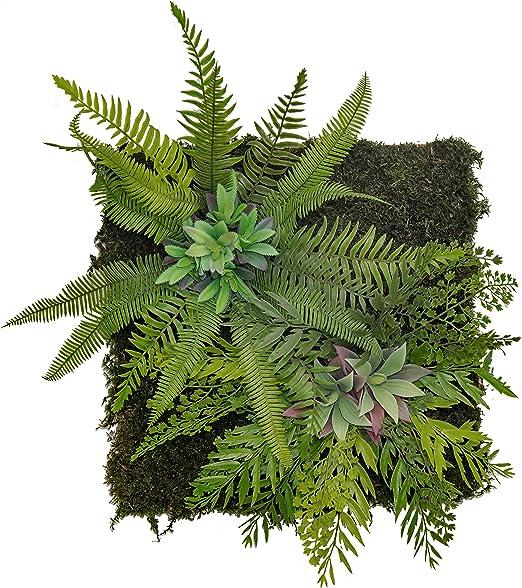 Maia Shop Jardín Vertical, Ideal para Decoración del Hogar u ...
