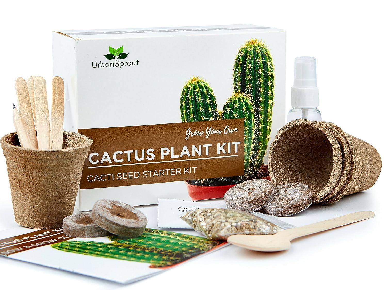 Kit para el Cactus – Fai crescere Le Tue Plantas de Cactus al cerrado – Un regalo para el Jardinería Inusuale – semini, tarros, Terra para el Cactus Tetra Products Ltd