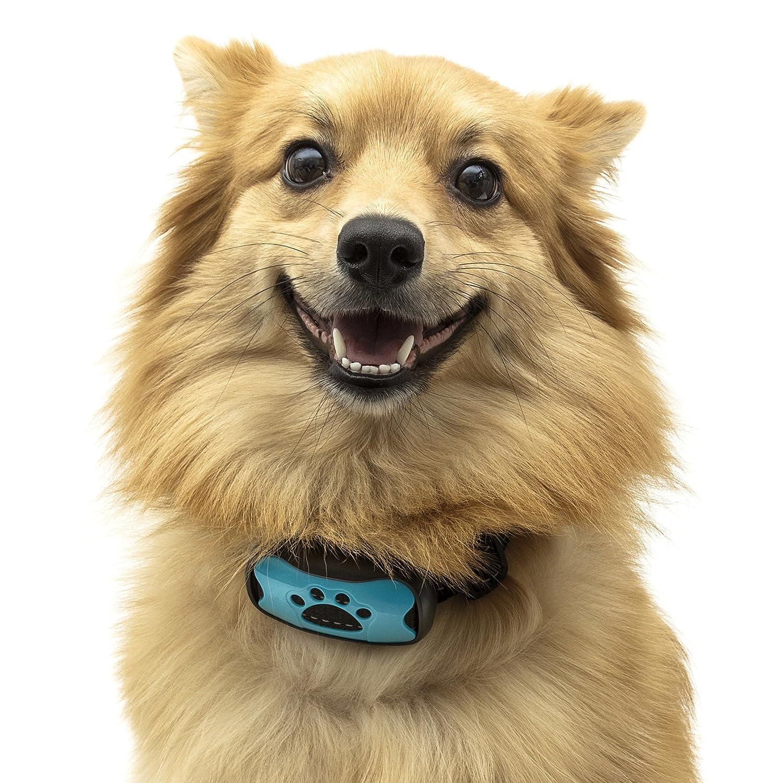 TopDog Collier anti-aboiement avec son et vibration pour chiens de taille petite, moyenne et grande 7niveaux de réglage, pas de choc électrique, sans danger et sans cruauté Empêche les chiens d'aboyer Batterie de rechange clapet supplémentaire incluse; L