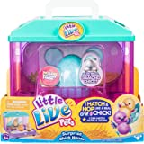 Little Live Pets S2 Surprise Chick House Collectible Figures, Aqua/ Green, 2.56