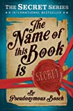 The Name of This Book is Secret (Usborne Modern Classics)