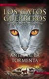 Antes de la tormenta: Los gatos guerreros - Los cuatro clanes IV (Narrativa Joven)