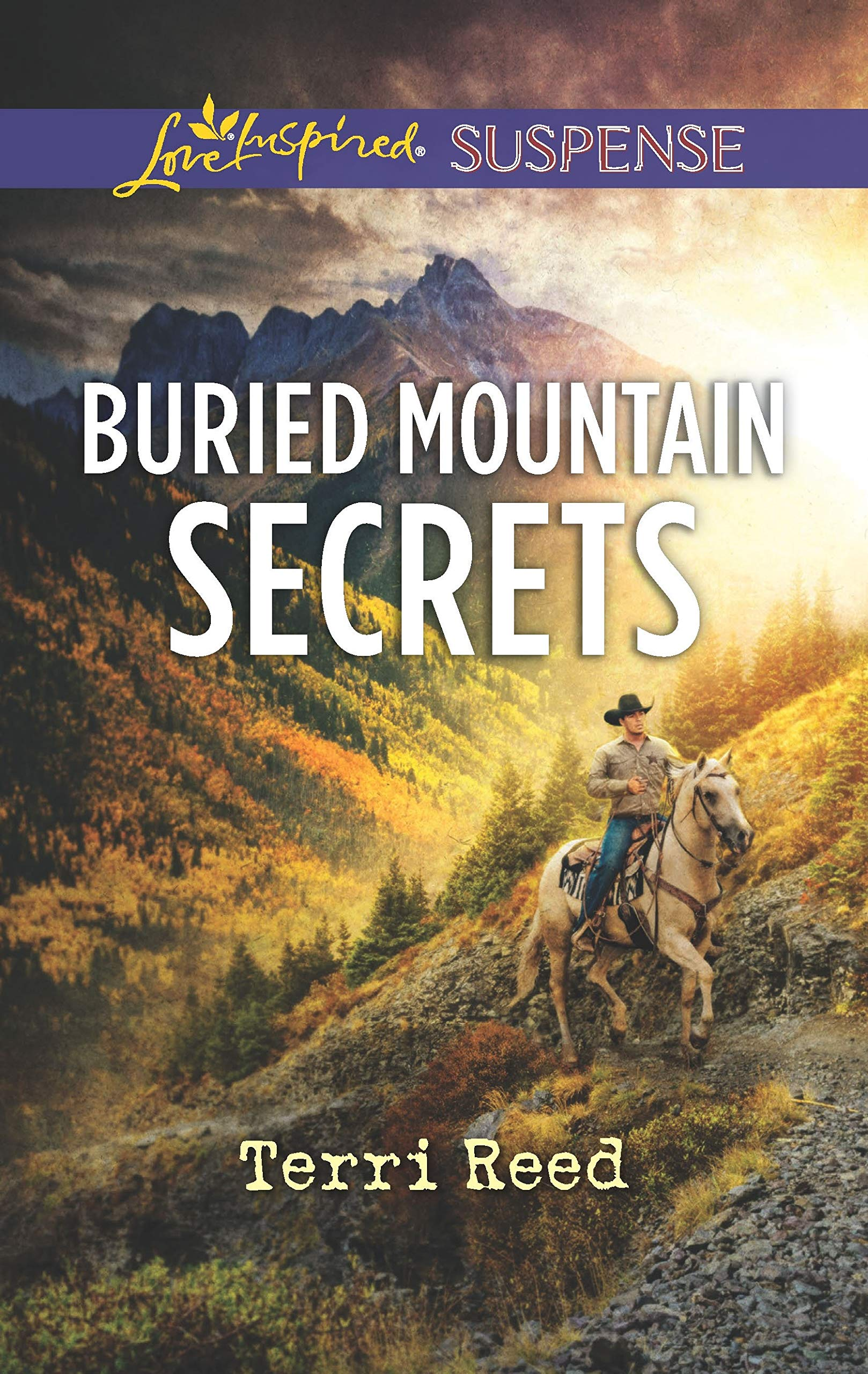 Image result for buried mountain secrets terri reed