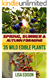 Spring, Summer & Autumn Foraging: 35 Wild Edible Plants: (Foraging Books, Backyard Foraging)