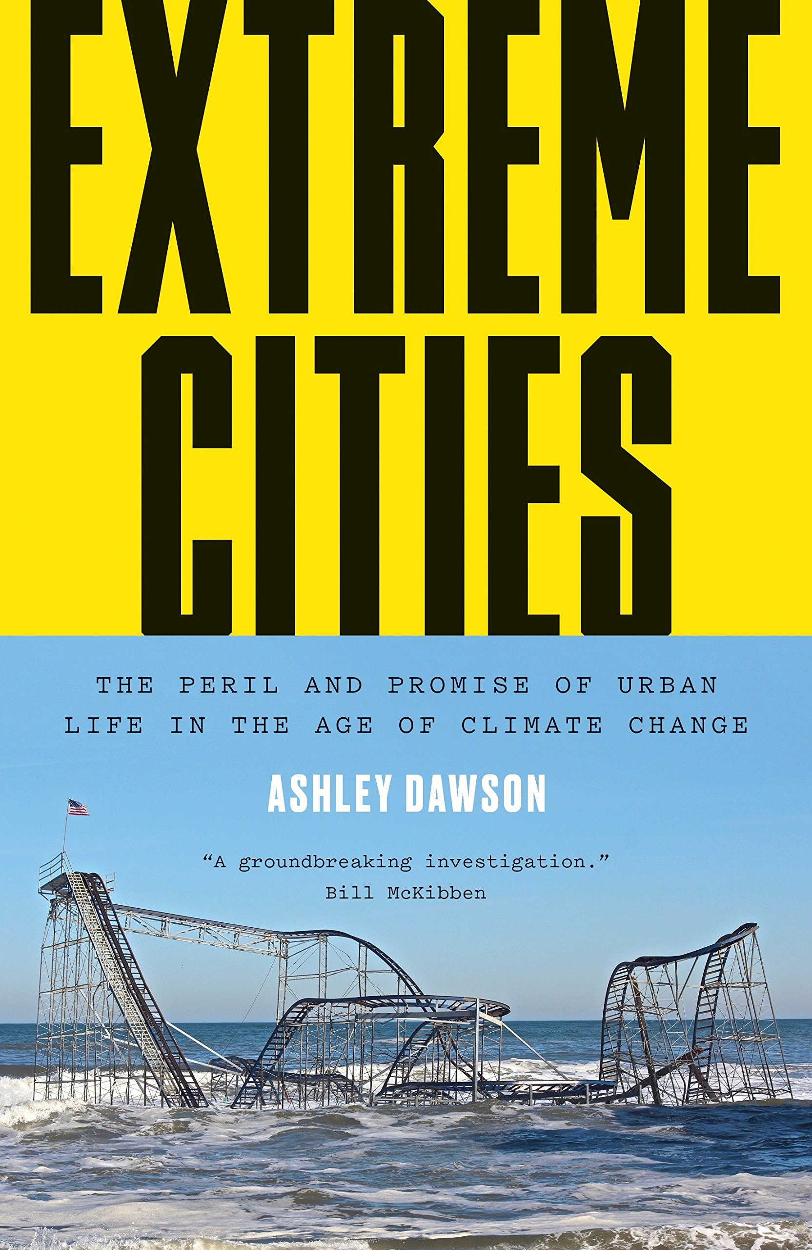 d8ecda318a252 Extreme Cities: The Peril and Promise of Urban Life in the Age of ...