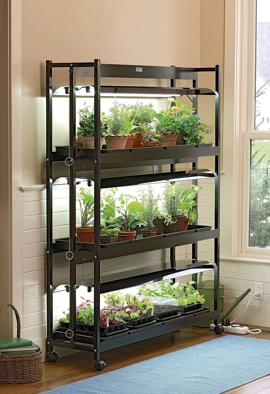 Best 25  Indoor plant stands ideas on Pinterest | Plant stands ... | Plant Racks Indoor