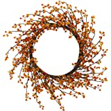 "Nearly Natural 24"" Sweet Bitter Wreath, Orange"