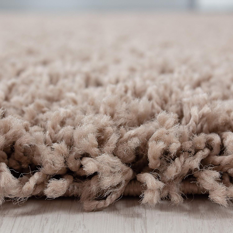 Hochflor Shaggy Teppich für Wohnzimmer Langflor Pflegeleicht Schadsstof geprüft Teppiche Teppiche Teppiche einfarbigOeko Tex Standarts , Farbe Braun, Maße 200x290 cm B07HLQYMVC Teppiche 999537
