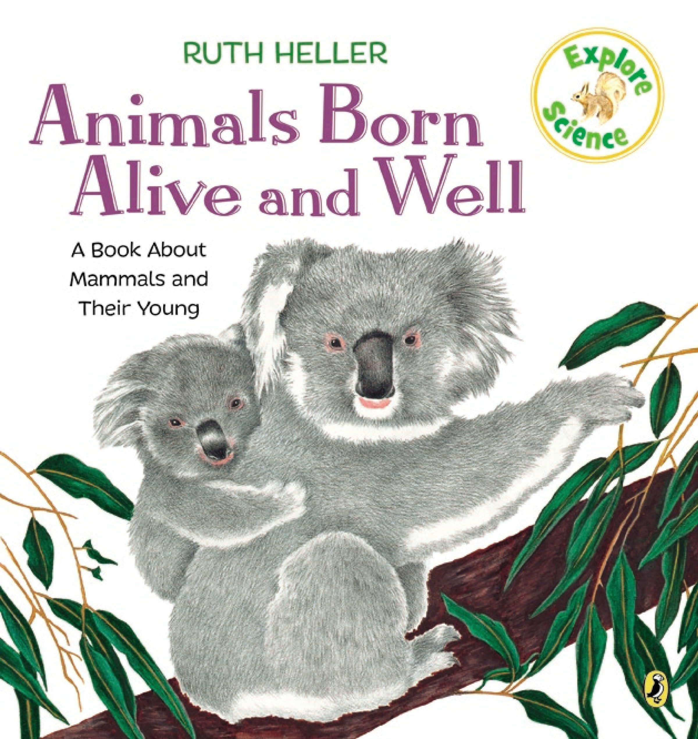 Image for Animals Born Alive and Well: A Book About Mammals (Explore!)