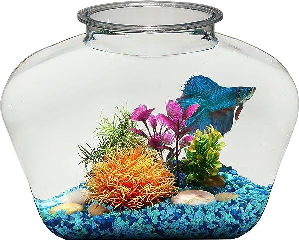 Betta-Fish-Plant