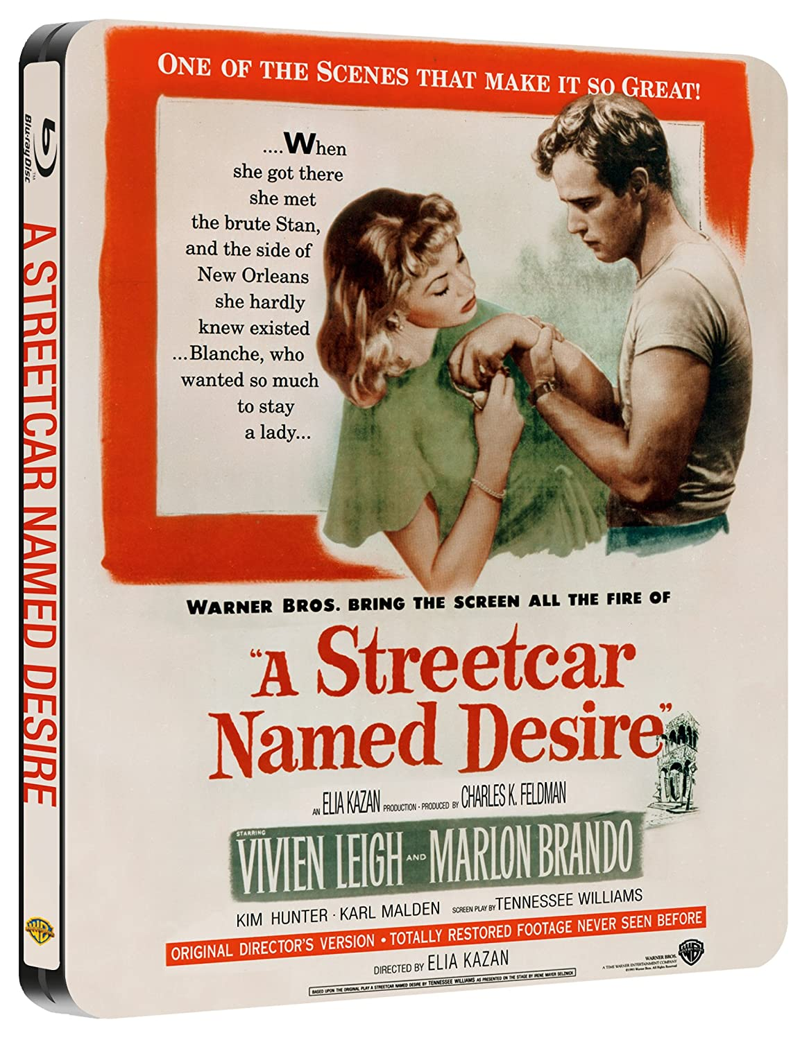 "introduction essay streetcar named desire Model essay 1 ""a streetcar named desire"" is a play written by tennessee williams in which the central character is flawed but nevertheless gains your admiration it is a play about blanche dunbois who comes to new orleans to live off her sister's charity after losing the family home through her promiscuous past."