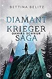 Die Diamantkrieger-Saga - Damirs Schwur (Die Diamantenkrieger-Saga 1)