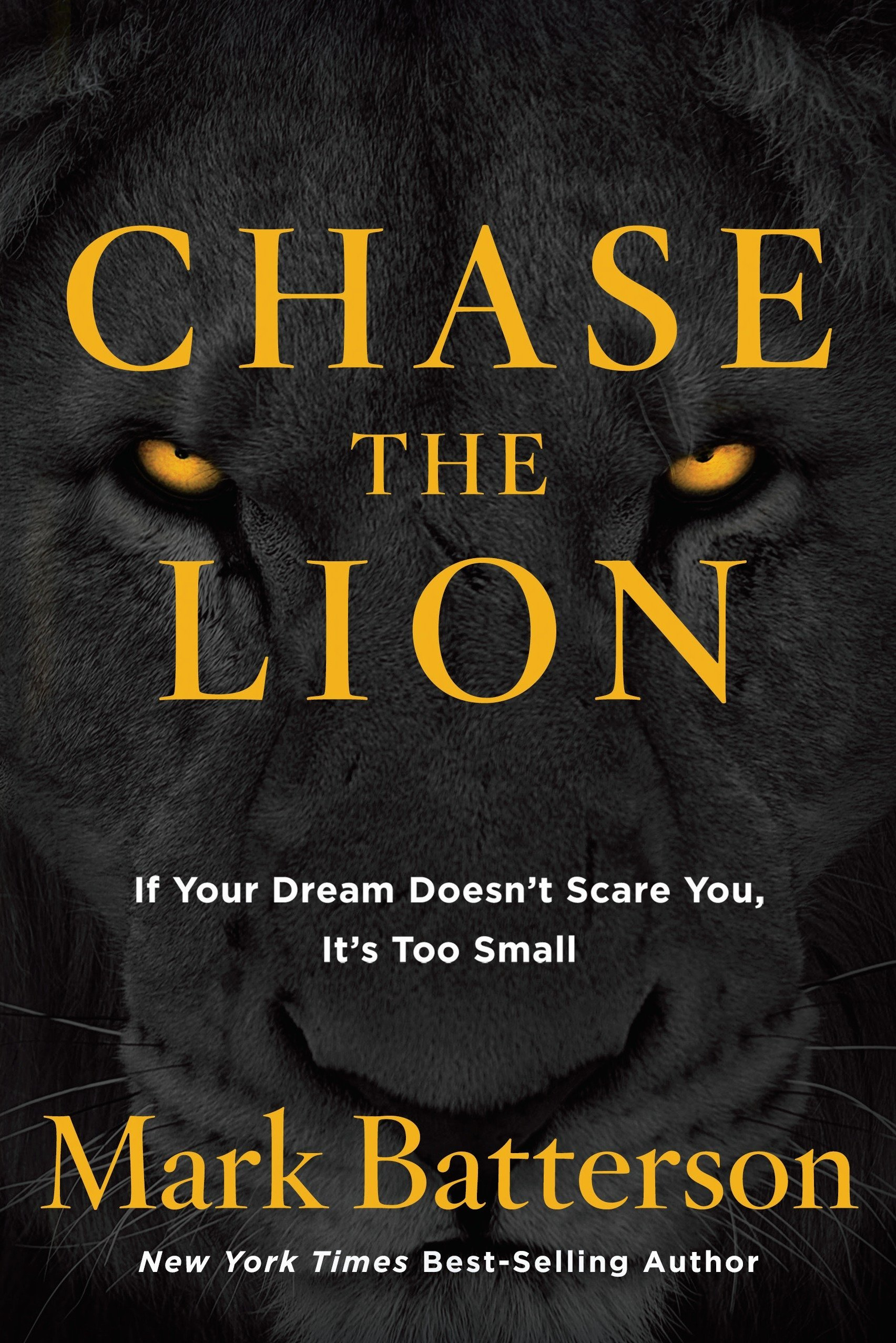 Chase the Lion: If Your Dream Doesn't Scare You, It's Too