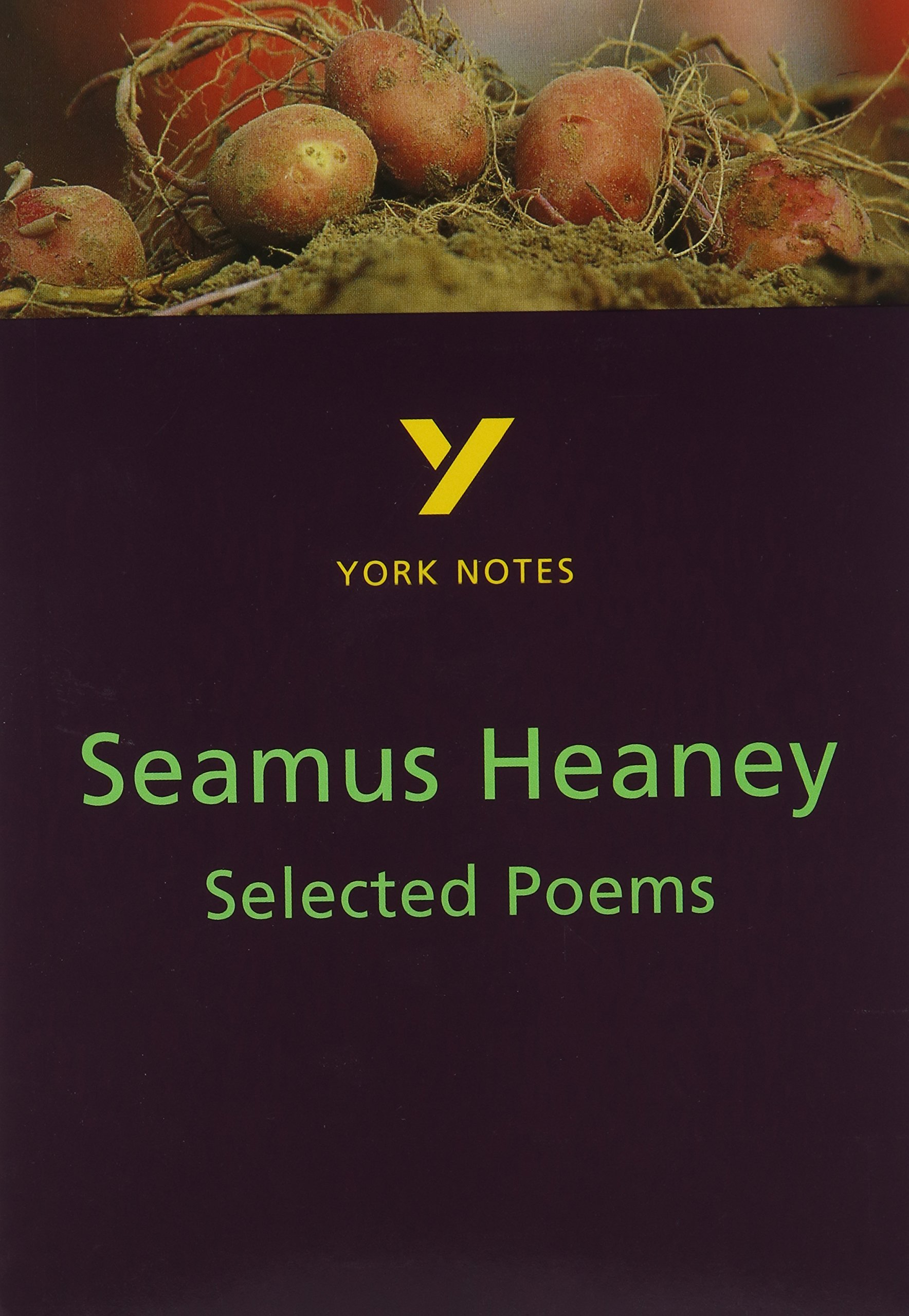 the poetry of seamus heaney a critical guide amazon co uk neil selected poems of seamus heaney york notes for gcse