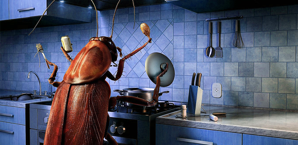 Amazon.com: Cockroaches in the kitchen: Appstore for Android