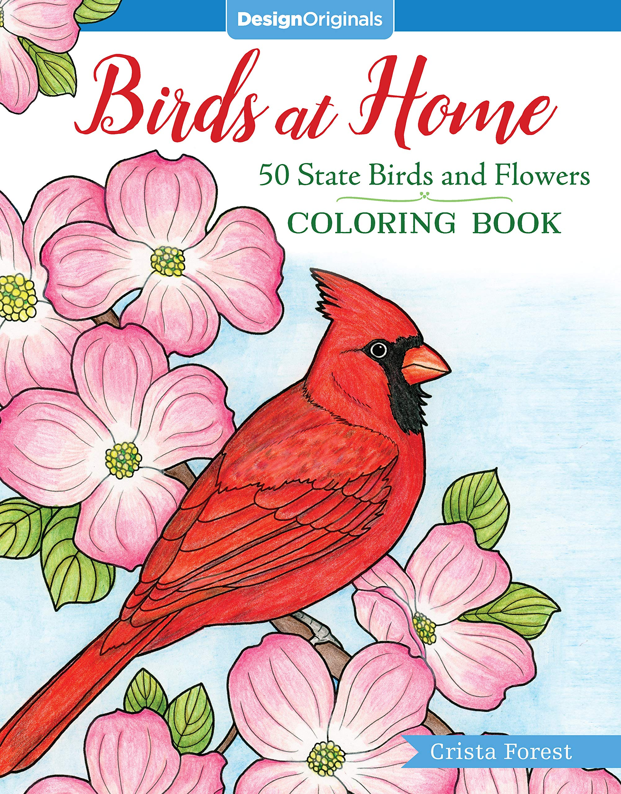 Amazon.com: Birds at Home Coloring Book: 50 State Birds and ...