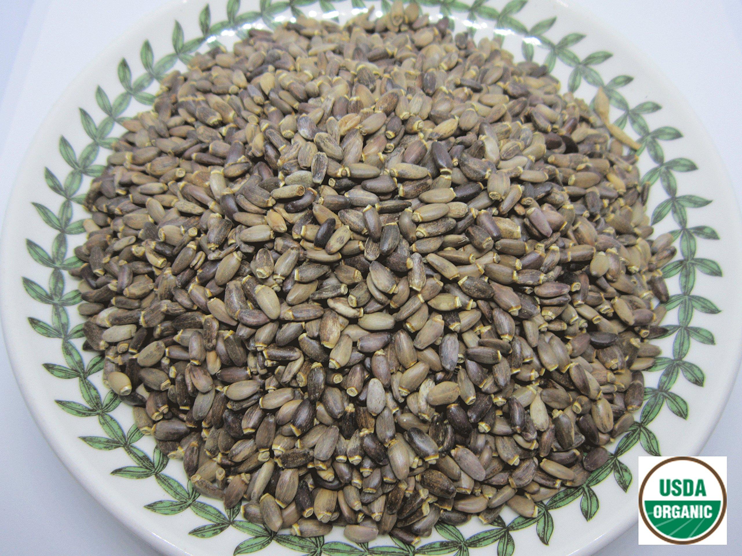 Organic Milk Thistle Seeds - Silybum marianum Loose Seeds 100% from Nature (08 oz)