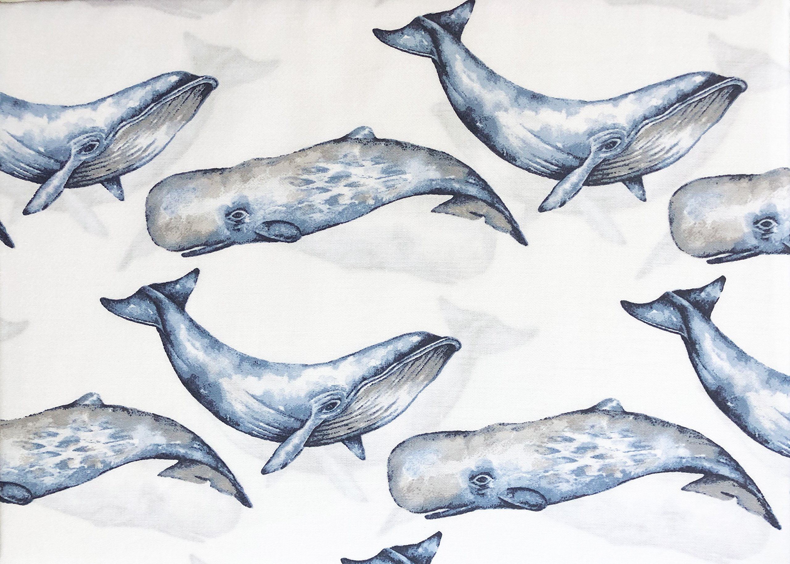 Boat House Bedding Kids 4 Piece Full Size Double Bed Cotton Sheet Set Painted Blue Nautical Ocean Whales