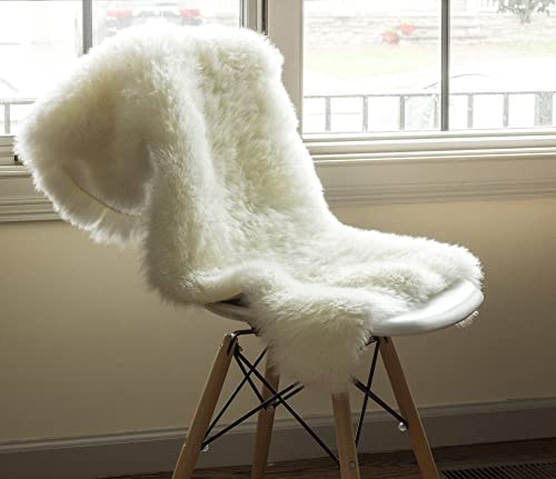 Super Area Rugs Ultra-Soft New Zealand Fluffy Sheepskin Rug, Single Pelt, Natural