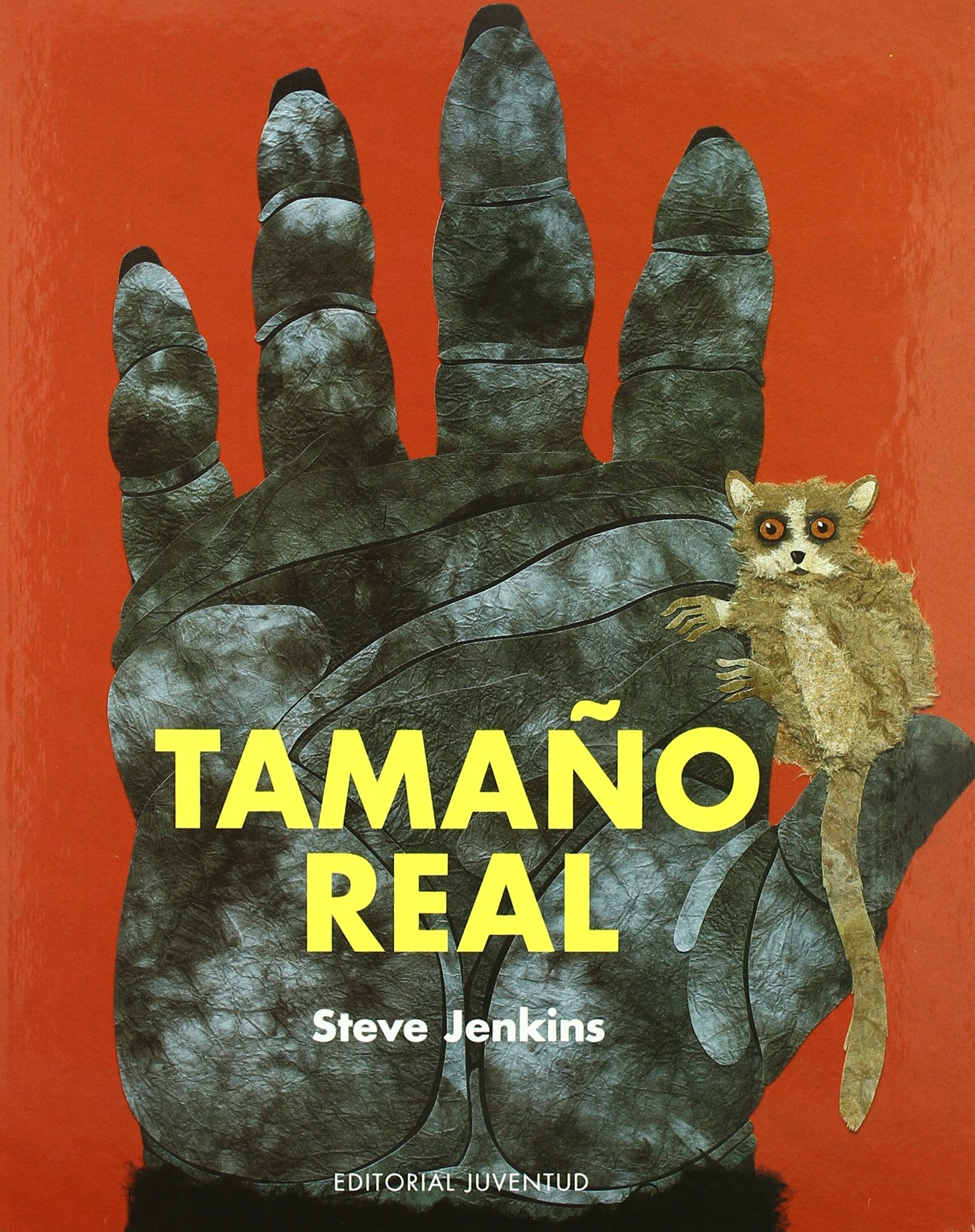 Download Tamano Real / Actual Size (Conocer Y Aprender / Know and Learn) (Spanish Edition) pdf epub
