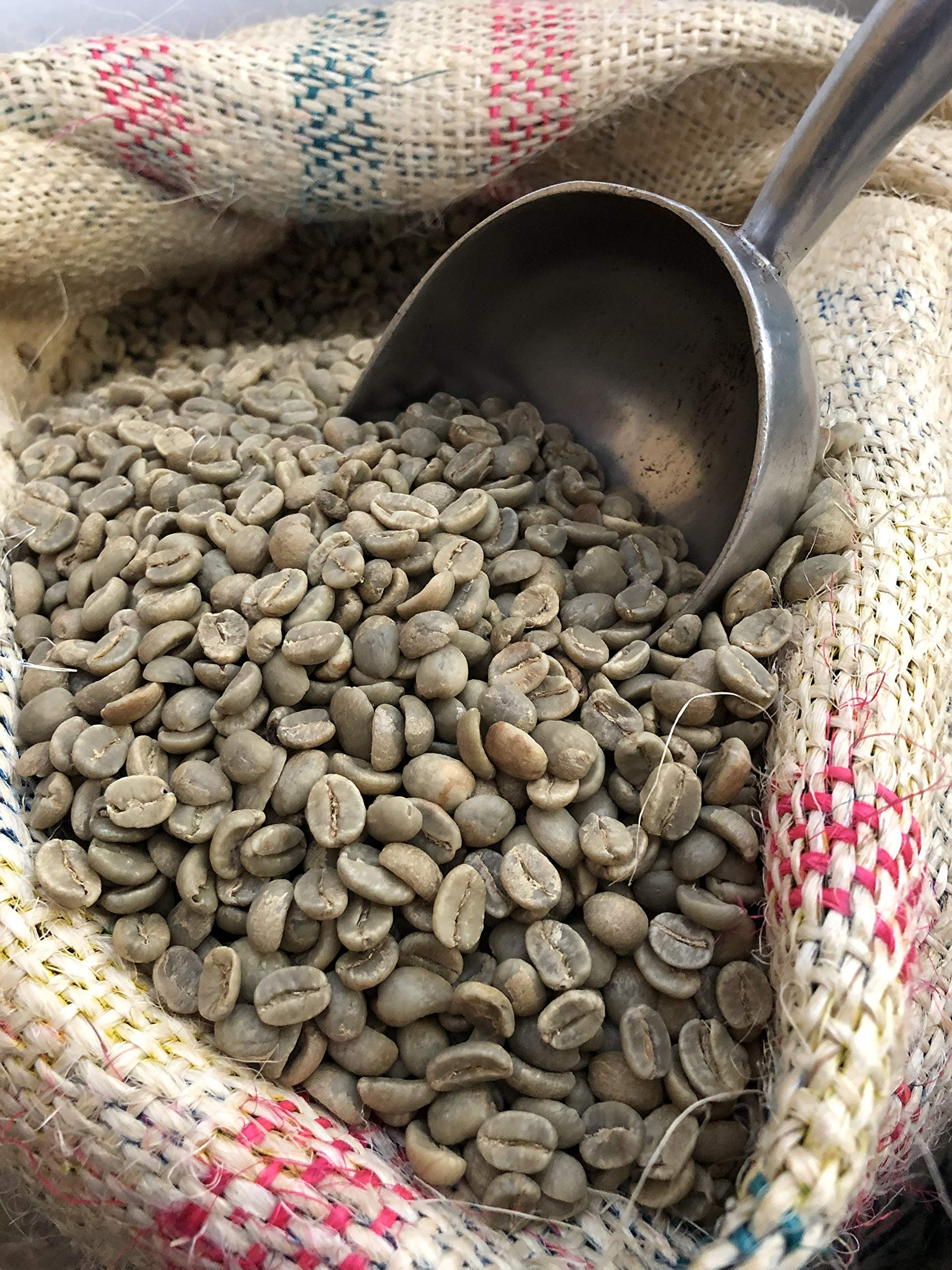 Colombia Unroasted Suprimo Green Coffee Beans New Crop (33) by Suprimo (Image #3)