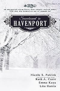 Snowbound in Havenport (A Havenport Romance Novella Boxed Set)