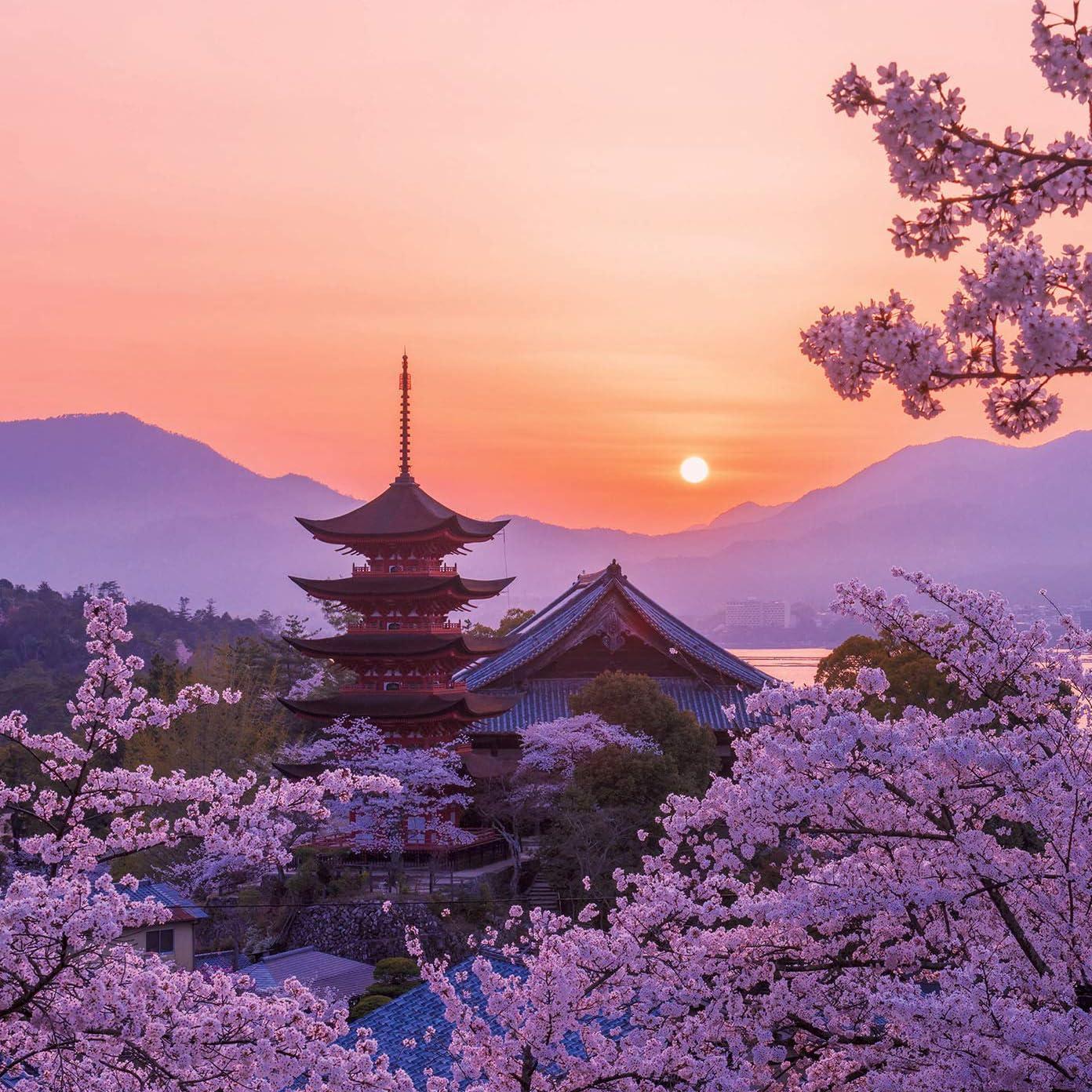 世界遺産 Ipad壁紙 桜色の厳島神社五重塔の夕景 その他 スマホ用画像121263