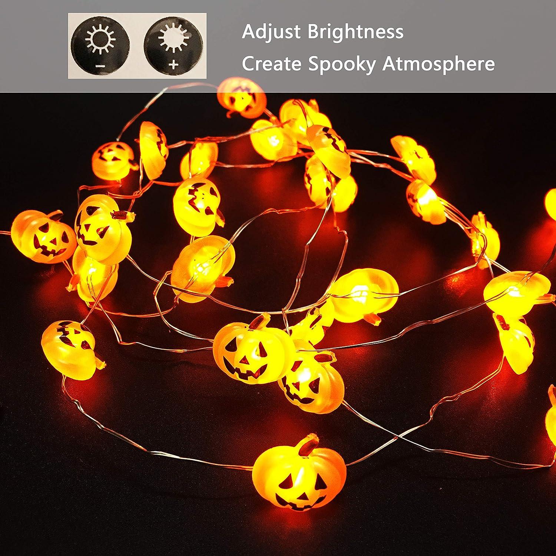 Amazoncom Petit Lydia Halloween Pumpkin String Lights, 40Led Pumpkin String