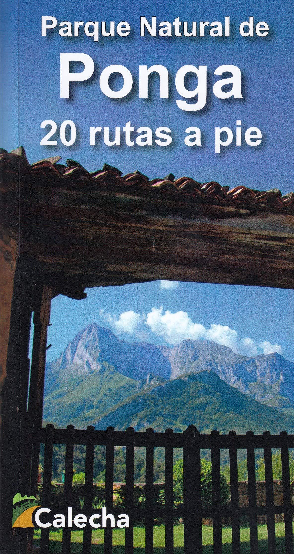 PARQUE NATURAL DE PONGA. 20 RUTAS A PIE: Amazon.es: ÁLVAREZ RUIZ, ALBERTO: Libros