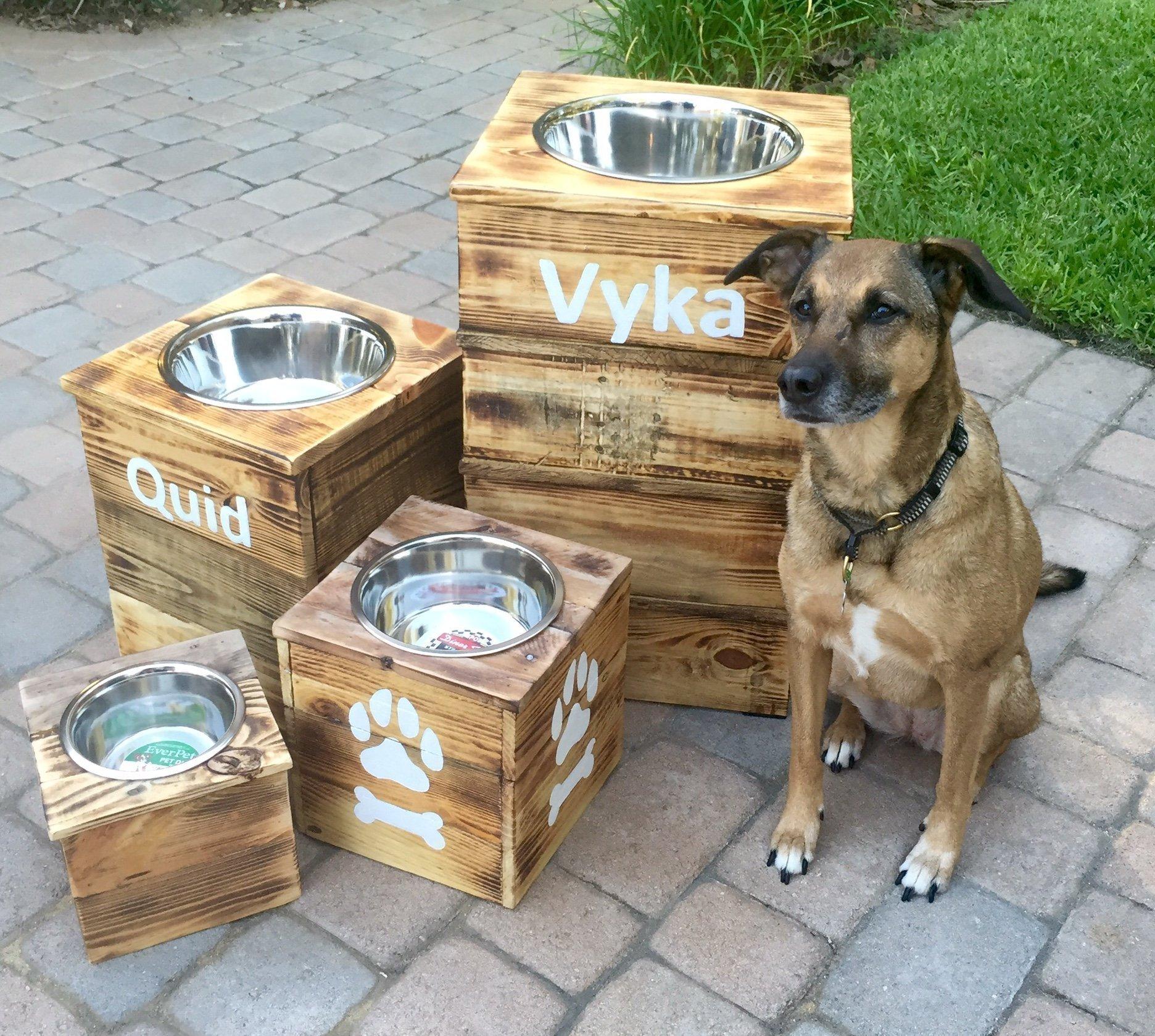 Double Extra Large Elevated Dog Dish // Extra Large 2 Bowl Feeding Stand // Dog Dish // Elevated Dog Bowl by 6 Dogs Decor (Image #2)