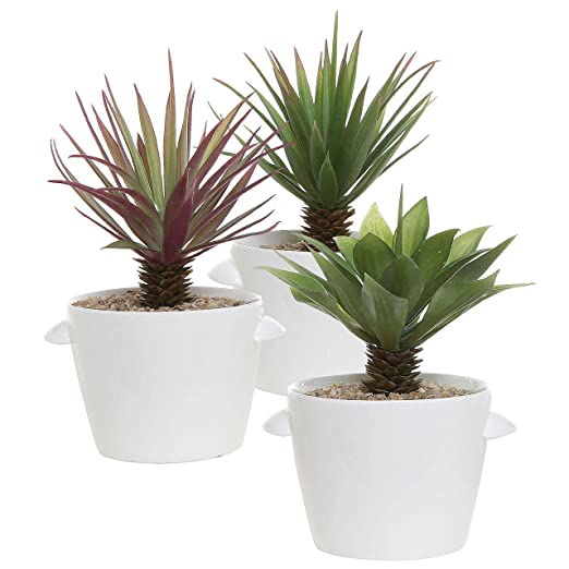 Small White Ceramic Planter Pots - Set of 3