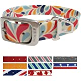 Kurgo Muck Collar Waterproof Dog Collar - Blue, Red, Orange, Grey, Multi Color, Patriotic, Union Jack and Maple Leaf