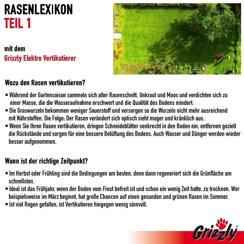 Elektrischer Rasenl/üfter Grizzly Elektro Power Vertikutierer ERV 1800-37 ZV