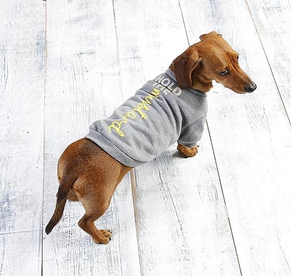 b0113263af0 Sausage Dog Puppy Jumper