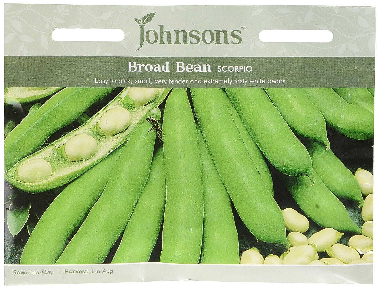 Johnsons UK/JO/PB Broad Bean Scorpio Johnsons Seeds