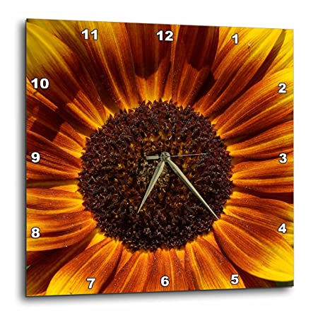 3dRose dpp_30838_3 Colorful Summer Sunflower Flowers Flower Photography-Wall Clock, 15 by 15-Inch