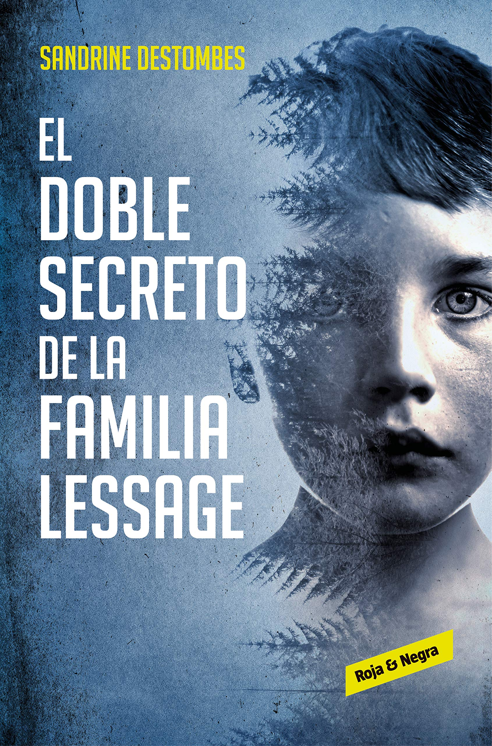 El doble secreto de la familia Lessage por Sandrine Destombes