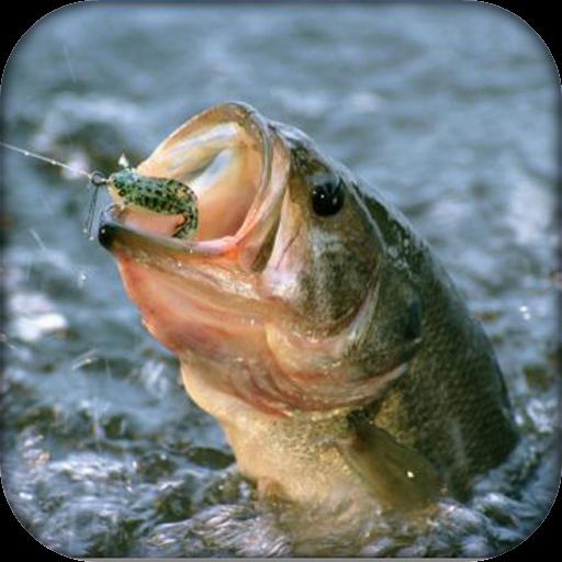 Deep Fishfinder (Joy Fishing Game)