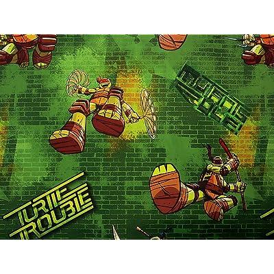 .com - JFSI Teenage Mutant Ninja Turtles Time to Shell Up (Flat Sheet ONLY) Size Twin Boys Girls Kids Bedding -